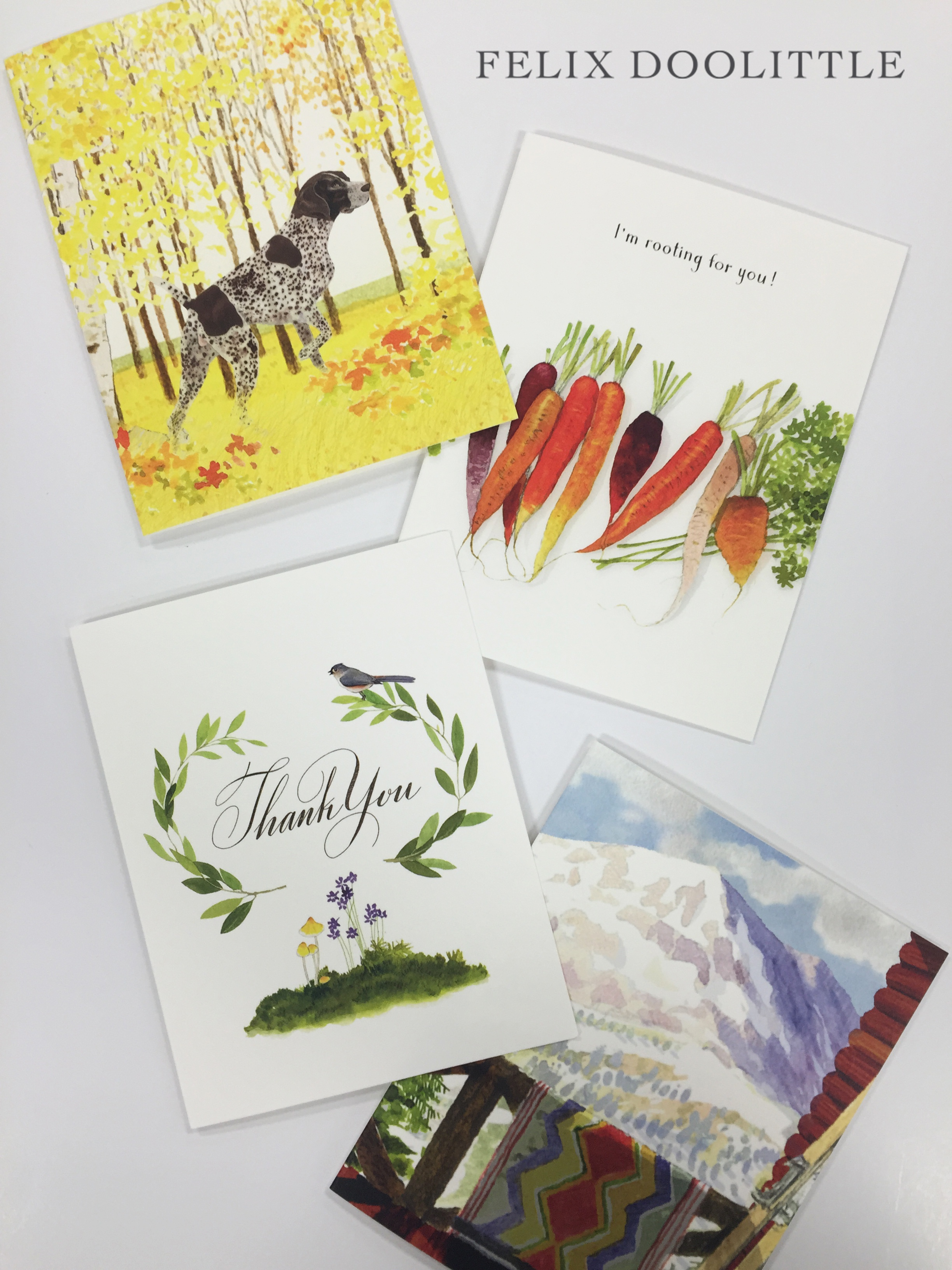Felix Doolittle Occasion Cards, that's #whatsonpress