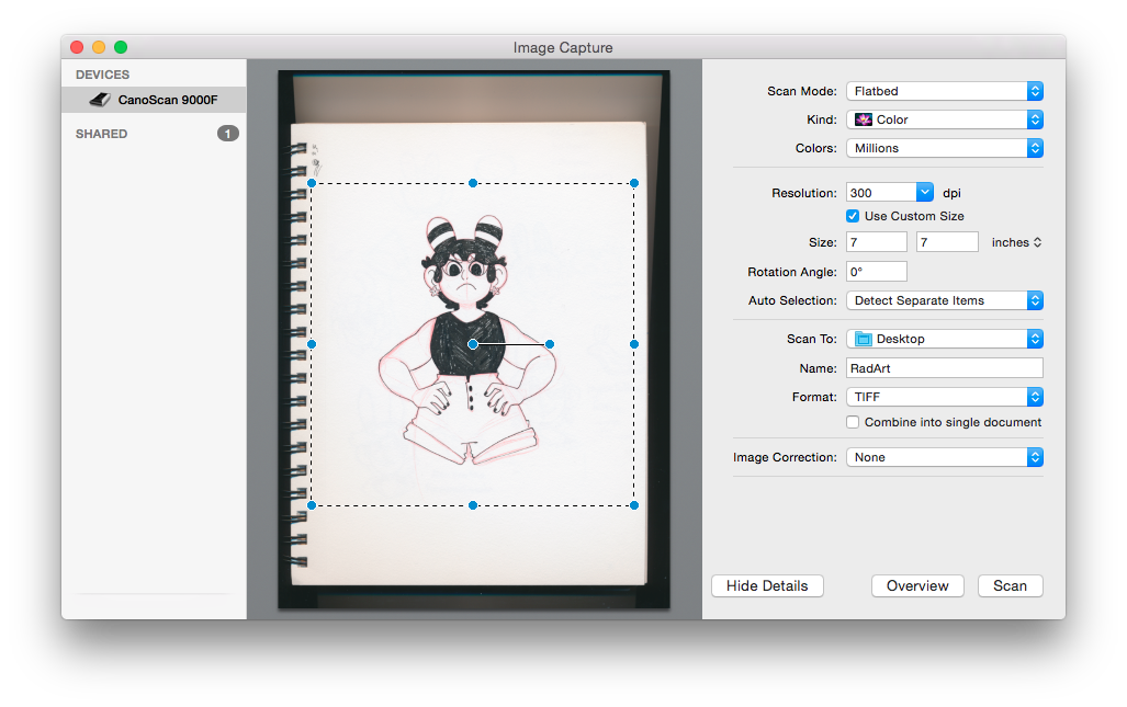 How to Convert Traditional Artwork & Illustration to Digital Art