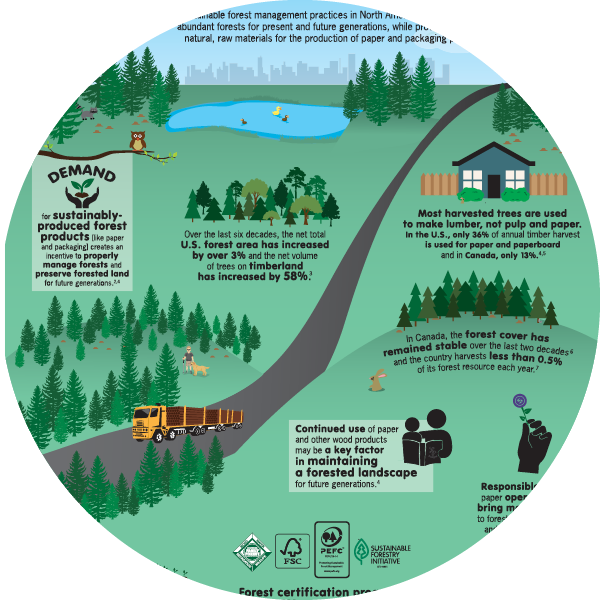 Paper Sustainability and Environmentalism Infographic