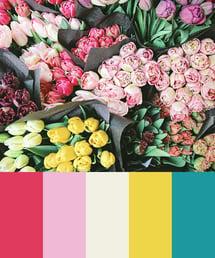 Color Palette of Bouquet of Pastel Flowers