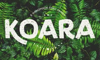 Koara – A Typeface for Spring