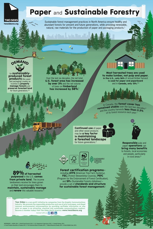 Paper and Sustainable Forestry Infographic