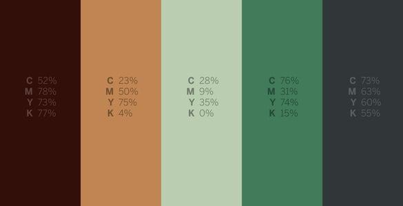 Coral Catshark - #Sharkweek 6 Color Palettes for Graphic Design